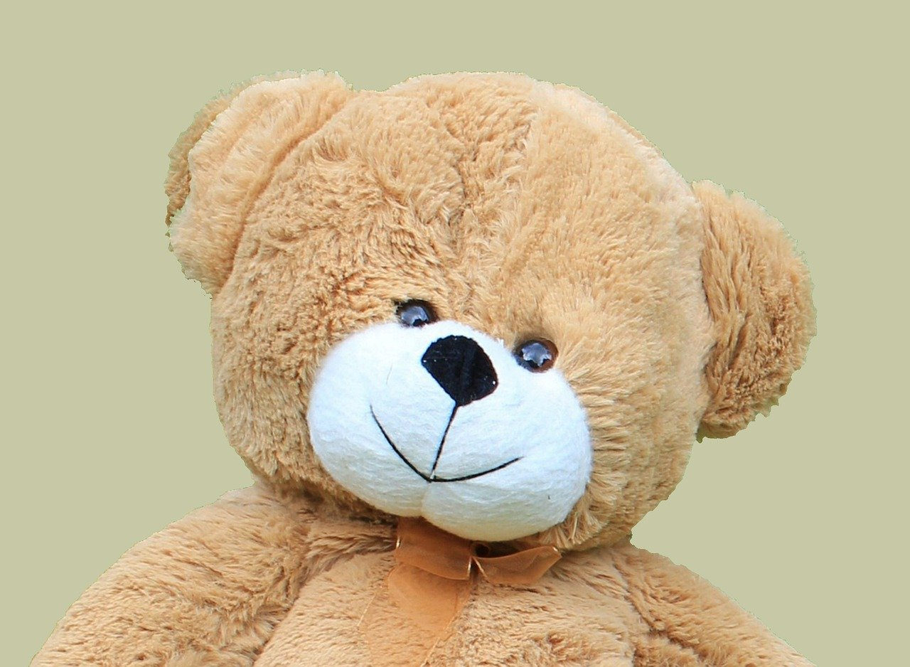 teddy, bear, cute