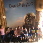 Colchester_Zoo_Sign