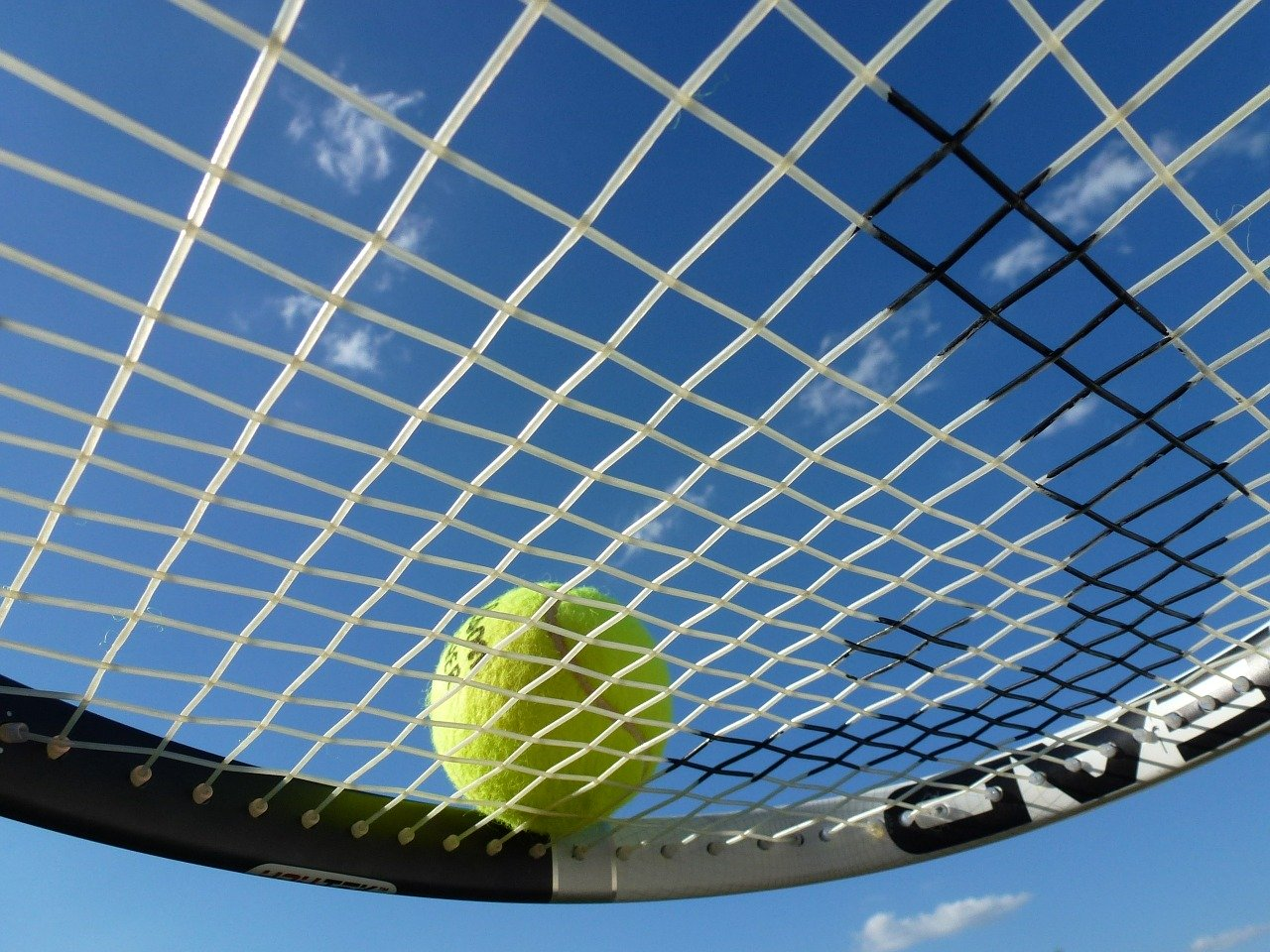 tennis, tennis ball, tennis racket